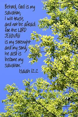Photograph - Lord Jehovah 2 by Sheri McLeroy