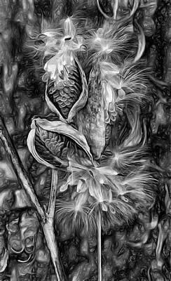 Milkweed Photograph - Lord Of The Dance - Paint Bw by Steve Harrington