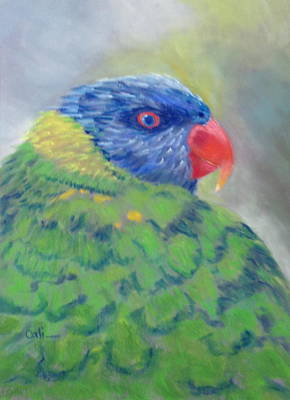 Painting - Lorikeet by Calliope Thomas