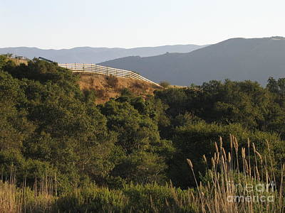 Photograph - Los Laureles Ridgeline by James B Toy