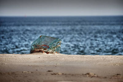 Photograph - Lost And Found Lobster Trap by Jeff Folger