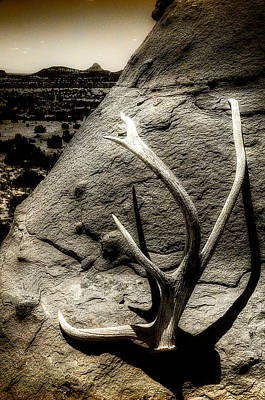 Sw New Mexico Photograph - Lost And Found by Roch Hart