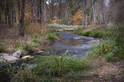 Photograph - Lost Creek by Cindy Rubin