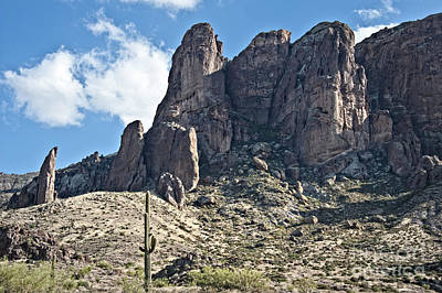 Photograph - Lost Dutchman Flat Iron by Lee Craig