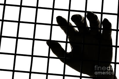 Jail Wall Art - Photograph - Lost Freedom by Olivier Le Queinec