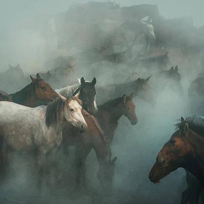 Cappadocia Wall Art - Photograph - Lost Horses by H??seyin Ta??k??n