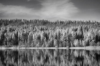 Infrared Photograph - Lost In Reflection by Laurie Search