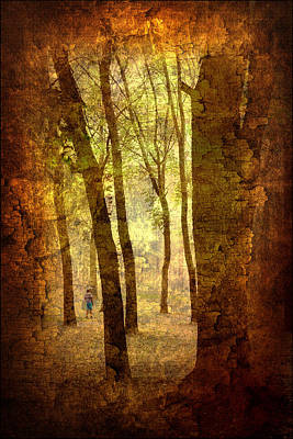 Photograph - Lost In The Dreamland Woods by Jenny Rainbow