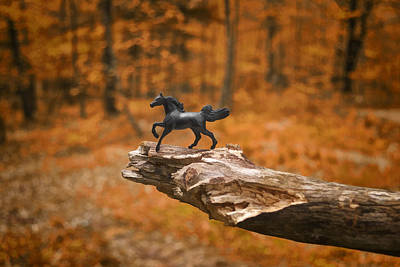 Realistic Photograph - Lost Toy In The Woods by Jeff  Gettis