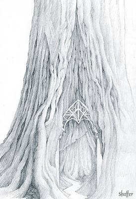 Drawing - Lothlorien Mallorn Tree by Curtiss Shaffer