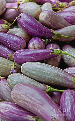 Photograph - Lots Of Eggplant Vegetables by Valerie Garner