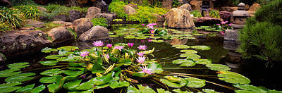 Los Angeles County Photograph - Lotus Blossoms, Japanese Garden by Panoramic Images