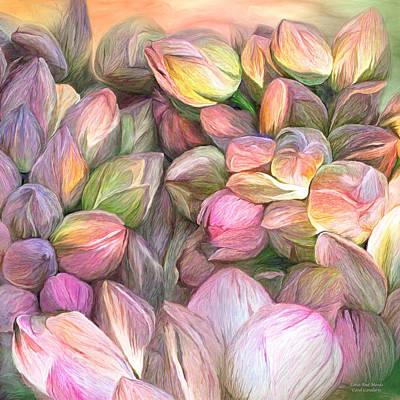 Lotus Bud Moods Art Print