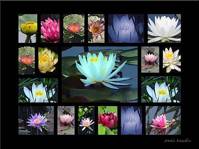 Artist Debra Vatalaro Mixed Media - Lotus Cluster by Debra     Vatalaro