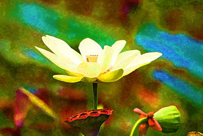 Digital Art - Lotus Flower by Audreen Gieger