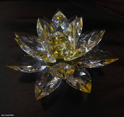 Glass Art - Lotus Flower Crystal by Shan Peck