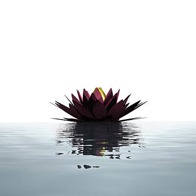 Flower Photograph - Lotus Flower Floating On The Water by Artpartner-images