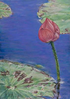 Pastel - Lotus II by Nancy Yang