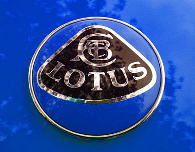 Photograph - Lotus Logo In Spring 2 by Laurie Tsemak