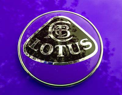 Photograph - Lotus Logo In Spring 3 by Laurie Tsemak