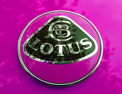 Photograph - Lotus Logo In Spring 4 by Laurie Tsemak