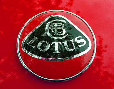 Photograph - Lotus Logo In Spring 5 by Laurie Tsemak