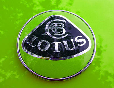 Photograph - Lotus Logo In Spring 6 by Laurie Tsemak