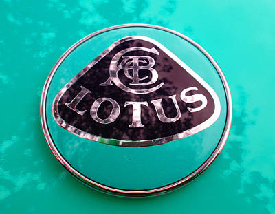 Photograph - Lotus Logo In Spring 8 by Laurie Tsemak