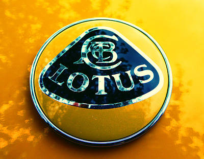 Photograph - Lotus Logo In Spring 9 by Laurie Tsemak