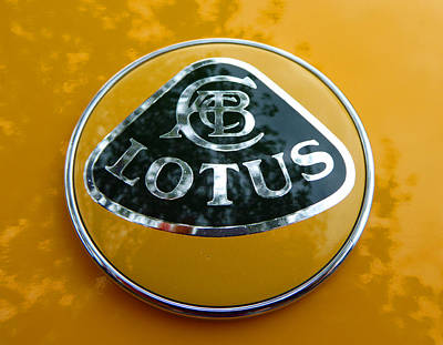 Photograph - Lotus Logo In Spring by Laurie Tsemak