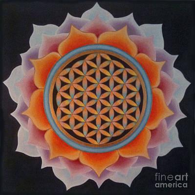 Lotus Of Life Original