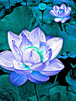 Photograph - Lotus On My Mind - 11 by Larry Knipfing