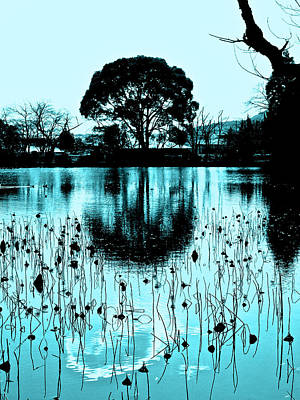 Photograph - Lotus Pond - Winter by Larry Knipfing