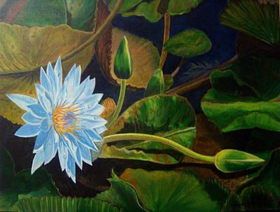 Lotus Bud Painting - Lotus by Vijayashree Nataraja