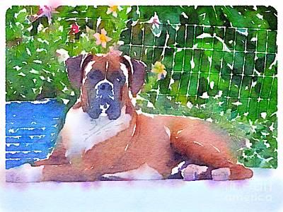 Boxer Dog Digital Art - Louie Xxl  by Susan Rienzo