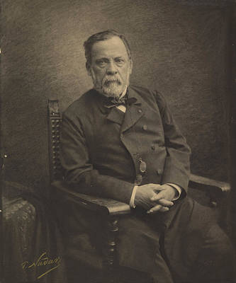 Buying Online Photograph - Louis Pasteur by Paul Nadar