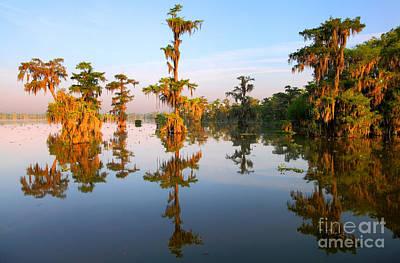Lafayette Photograph - Louisiana Bayou by Denis Tangney Jr