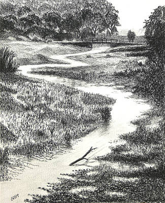 Swamp Drawing - Louisiana Bayou by Garry McMichael