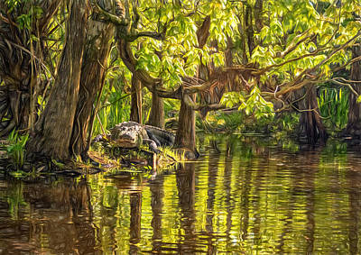 Cypress Swamp Photograph - Louisiana Bayou - Paint by Steve Harrington