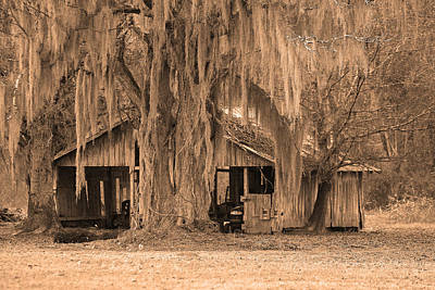 Photograph - Louisiana Cajun Camp by Ronald Olivier