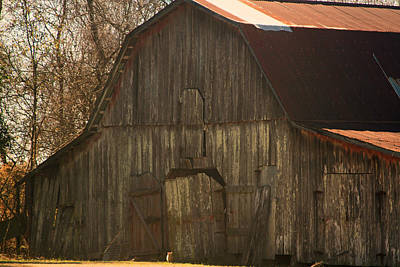 Photograph - Louisiana Cajun Cypress Barn by Ronald Olivier