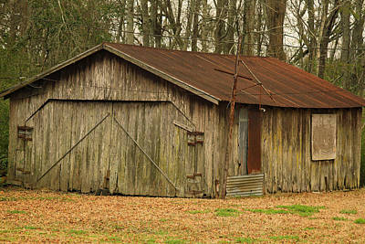 Photograph - Louisiana Cajun Cypress Shed by Ronald Olivier