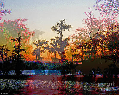 Digital Art - Louisiana Swampset by Lizi Beard-Ward