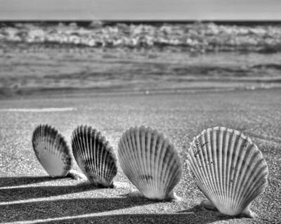 Lounging In Destin Bw Art Print by JC Findley
