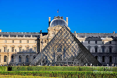Cactus - Louvre Museum Paris France by Michal Bednarek