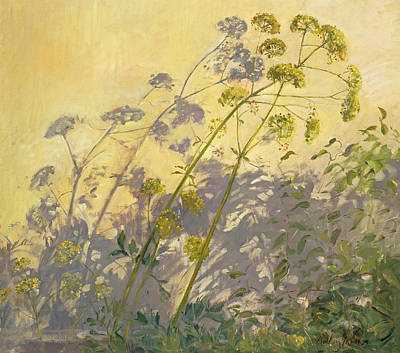 Against The Sunlight Painting - Lovage Clematis And Shadows by Timothy  Easton