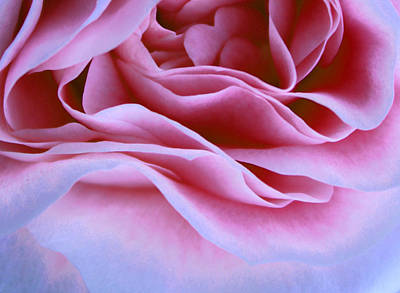 One Of A Kind Photograph - Love And Art by The Art Of Marilyn Ridoutt-Greene