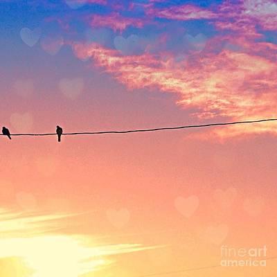 Photograph - Love Birds by LeLa Becker