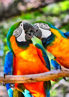 Macaw Painting - Love Bites - Parrots In Silver Springs by Christine Till