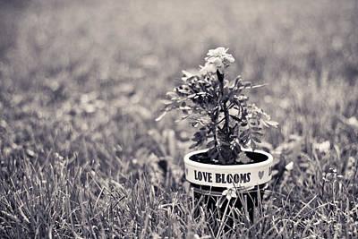 Love Blooms Art Print by Sara Frank